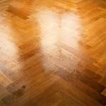 Grandmother's Floor (Behave 2)