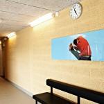 Sekvenser – permanent installation at Vallda idrottshall, Kungsbacka, Sweden. Commissioned by Kungsbacka kommun, 2014